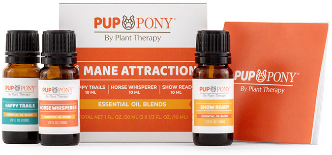 Mane Attraction Set