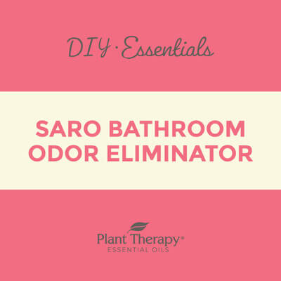 Bathroom Odor Eliminator