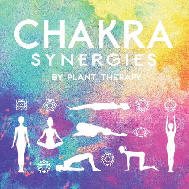 Journey Through the Chakras Infographic