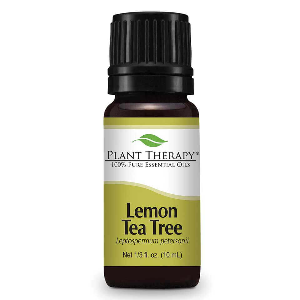 Lemon Tea Tree Essential Oil 10 mL