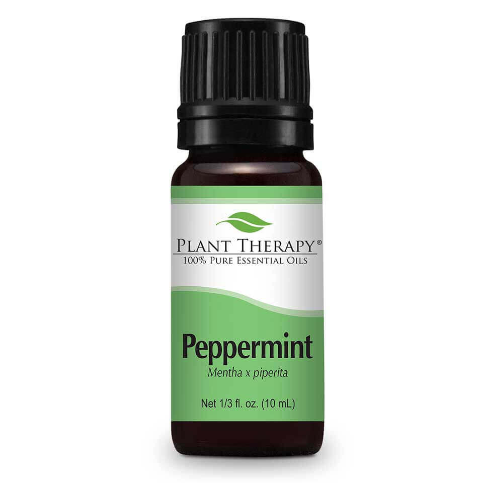 peppermint essential oil cool grassy minty scent plant therapy