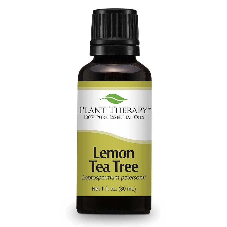 Lemon Tea Tree Essential Oil 30 mL