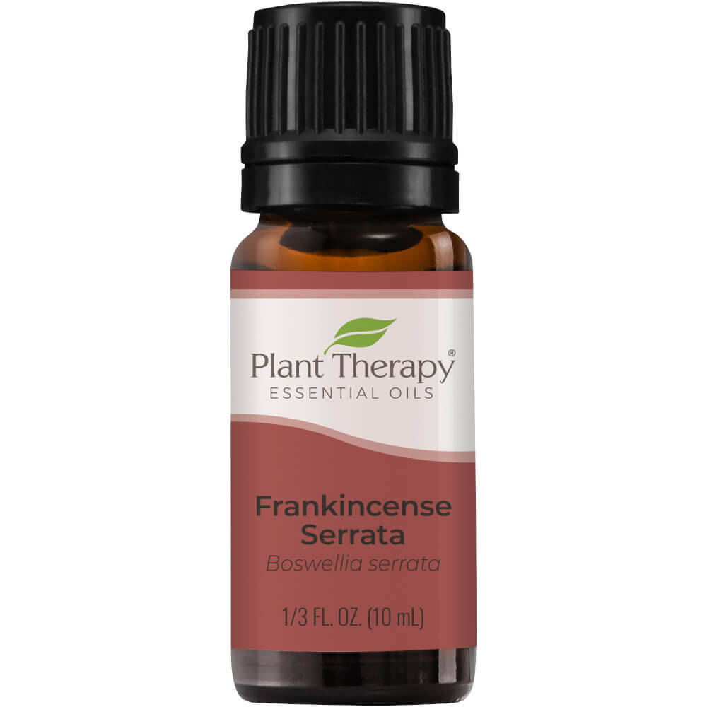 Frankincense Serrata Essential Oil Plant Therapy