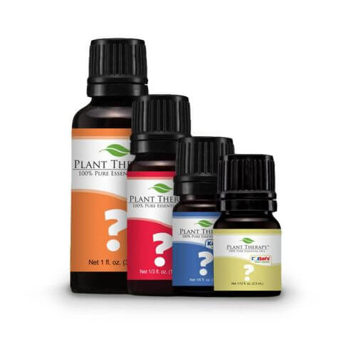 oil of the month club essential oils plant therapy